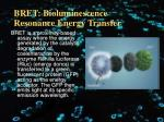 bret bioluminescence resonance energy transfer