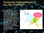 monitoring of ubiquitination in ling cells with bret