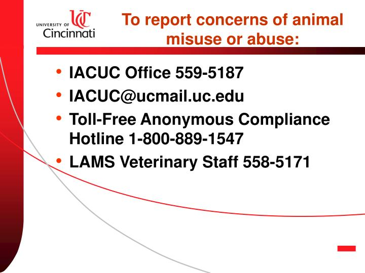 To report concerns of animal misuse or abuse: