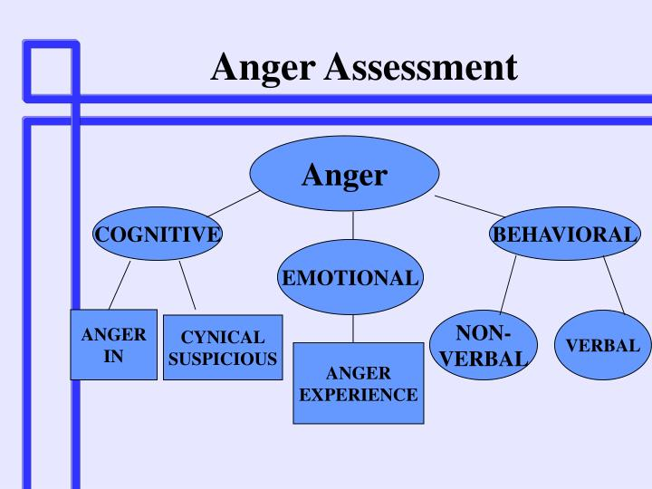 Anger Assessment