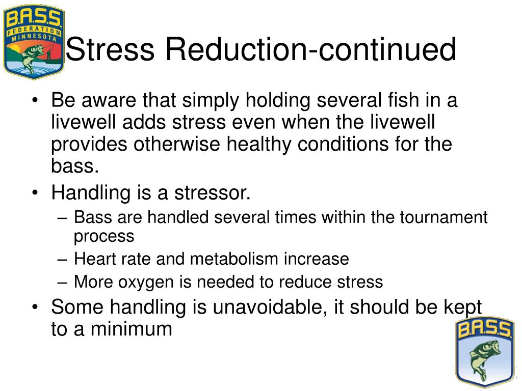 Stress Reduction-continued