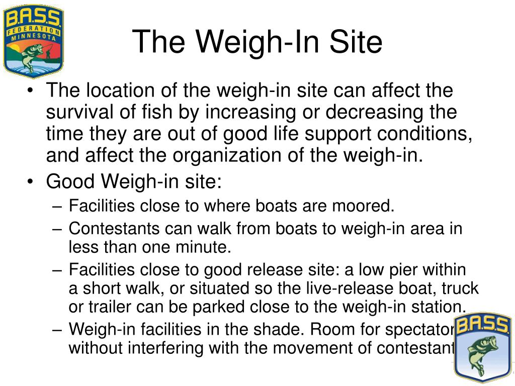 The Weigh-In Site