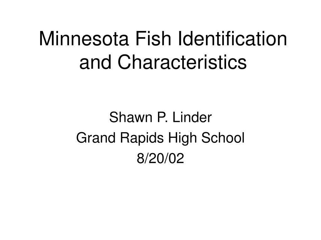 minnesota fish identification and characteristics l.