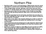 northern pike40