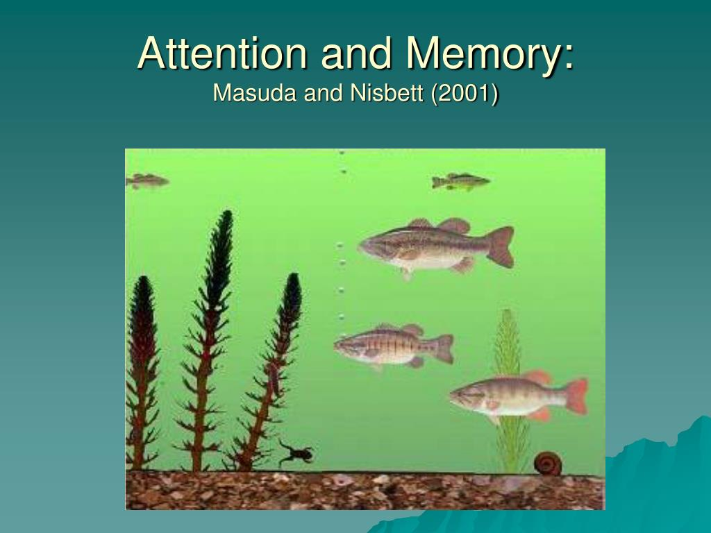 Attention and Memory:
