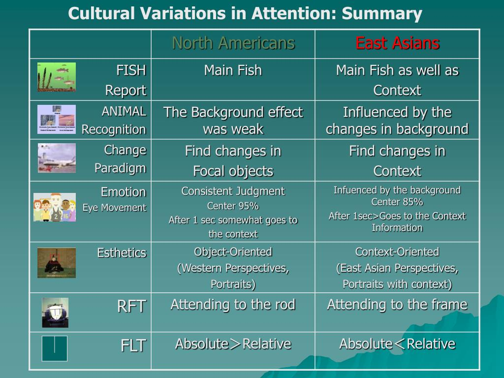 Cultural Variations in Attention: Summary