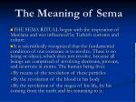 the meaning of sema