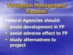 floodplain management purpose