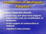 protection of wetlands purpose