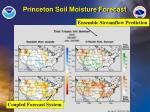 princeton soil moisture forecast