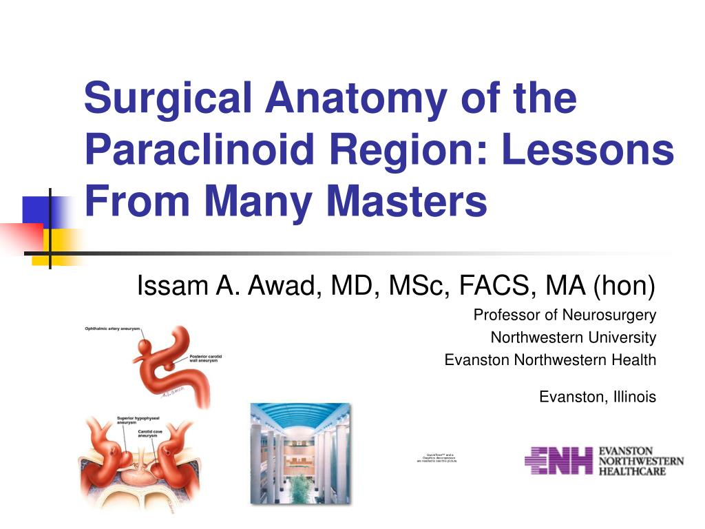 surgical anatomy of the paraclinoid region lessons from many masters l.
