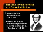 reasons for the forming of a synodical union