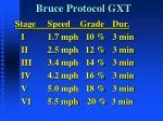 bruce protocol gxt