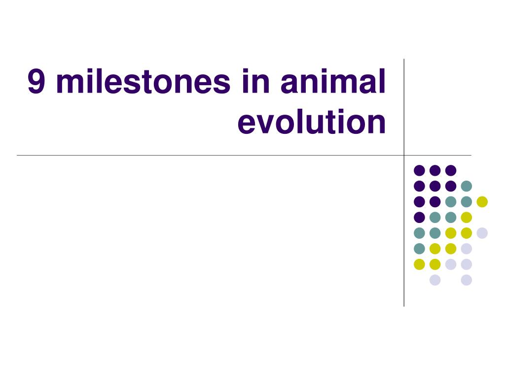 9 milestones in animal evolution l.