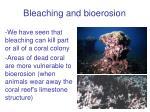 bleaching and bioerosion