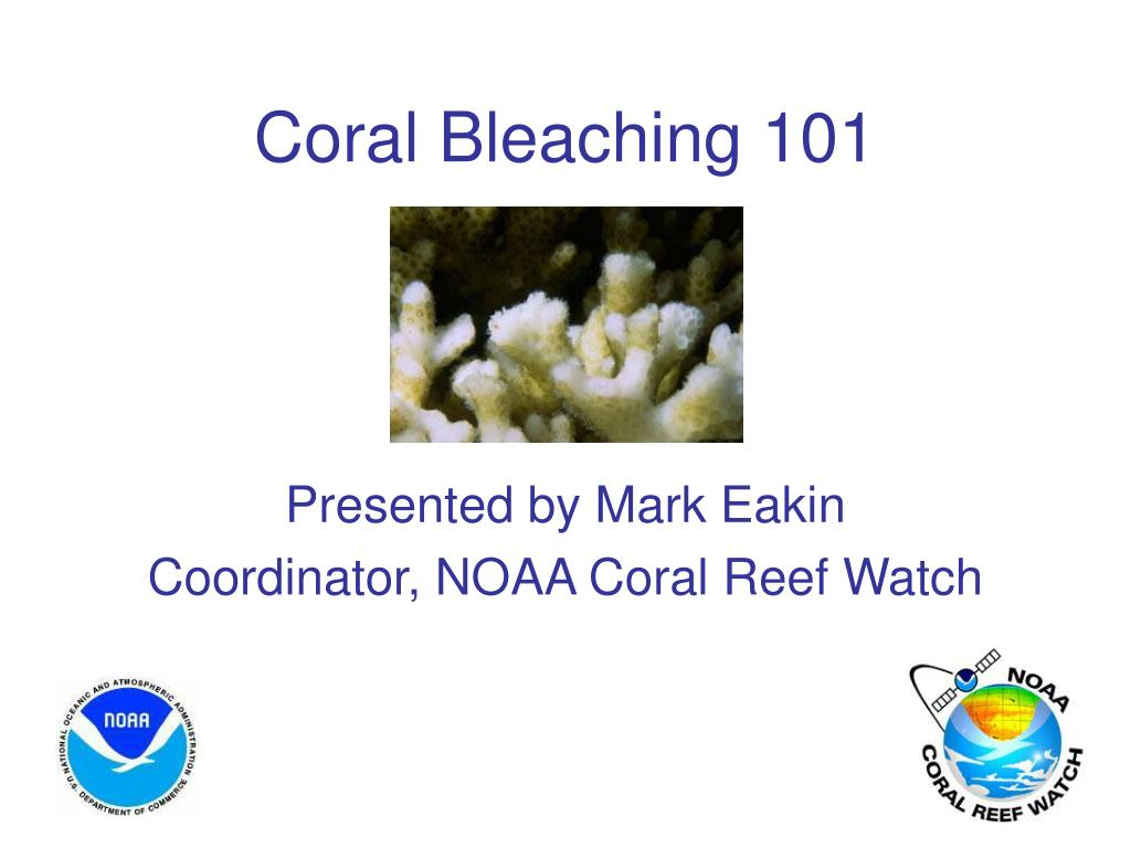 coral bleaching 101 l.