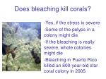 does bleaching kill corals