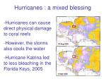 hurricanes a mixed blessing