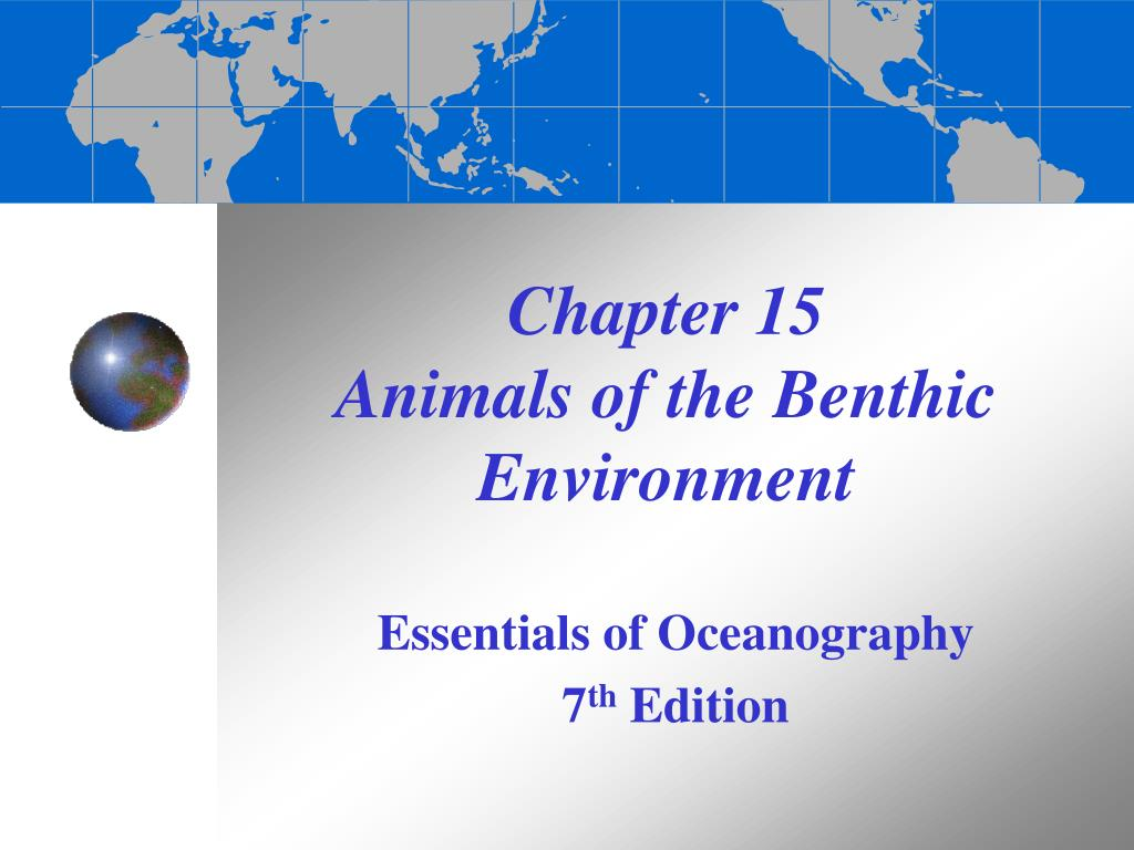 chapter 15 animals of the benthic environment l.