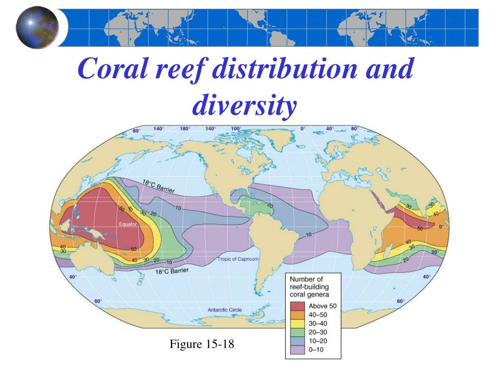 Coral reef distribution and diversity
