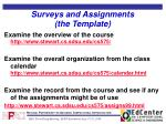 surveys and assignments the template