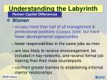 understanding the labyrinth1