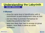 understanding the labyrinth2