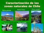 caracterizaci n de las zonas naturales de chile