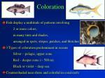 coloration15