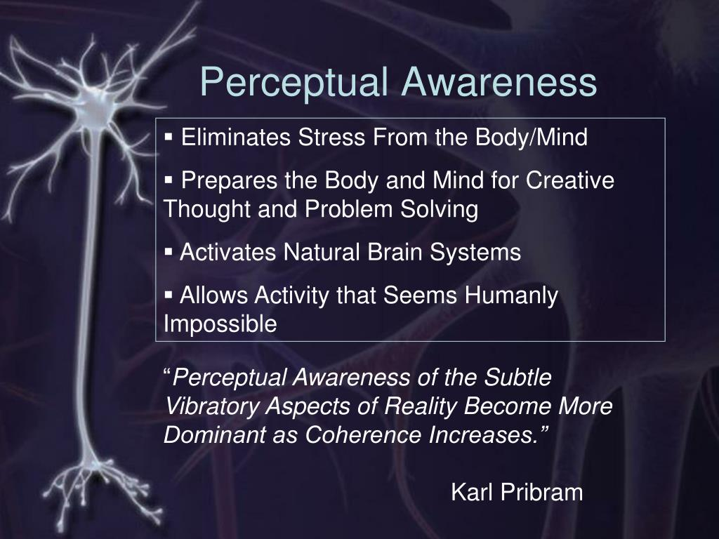 Perceptual Awareness