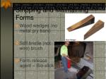 stripping and maintaining forms