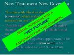 new testament new covenant