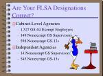 are your flsa designations correct