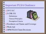 important flsa guidance