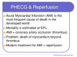 phecg reperfusion