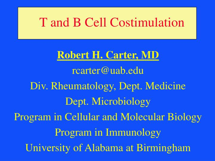 t and b cell costimulation n.