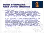 example of planning visit auburn university to indonesia