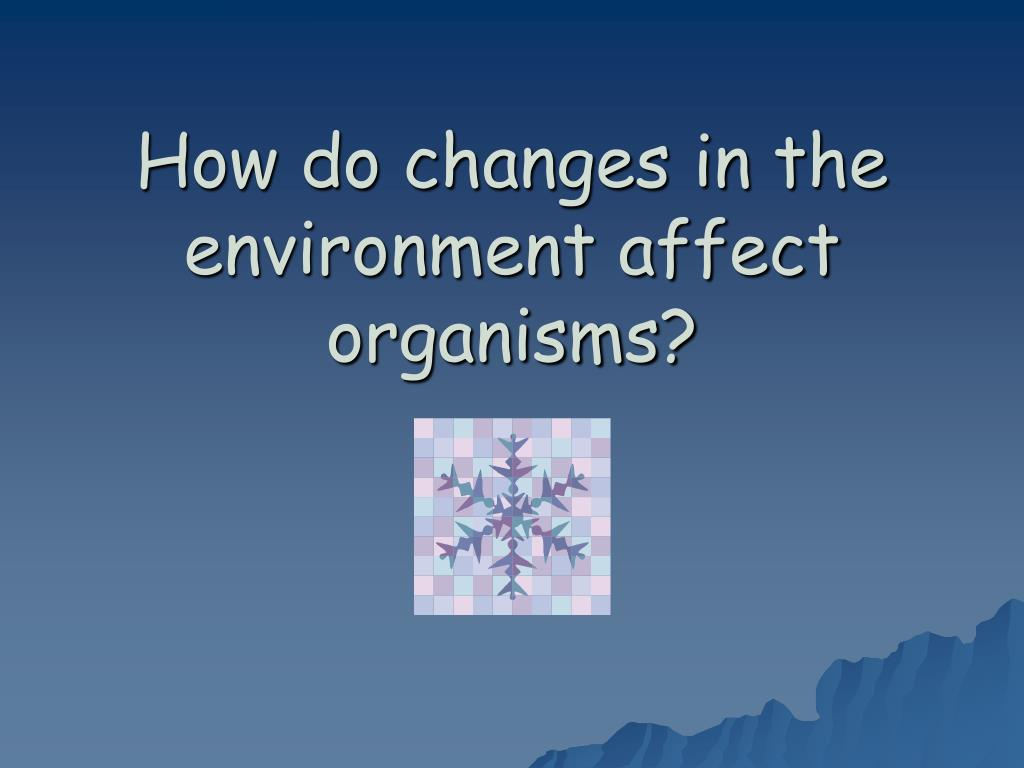 how do changes in the environment affect organisms l.