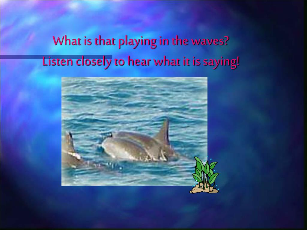 What is that playing in the waves?