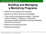 building and managing a mentoring programs