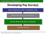 developing pay surveys