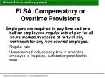 flsa compensatory or overtime provisions