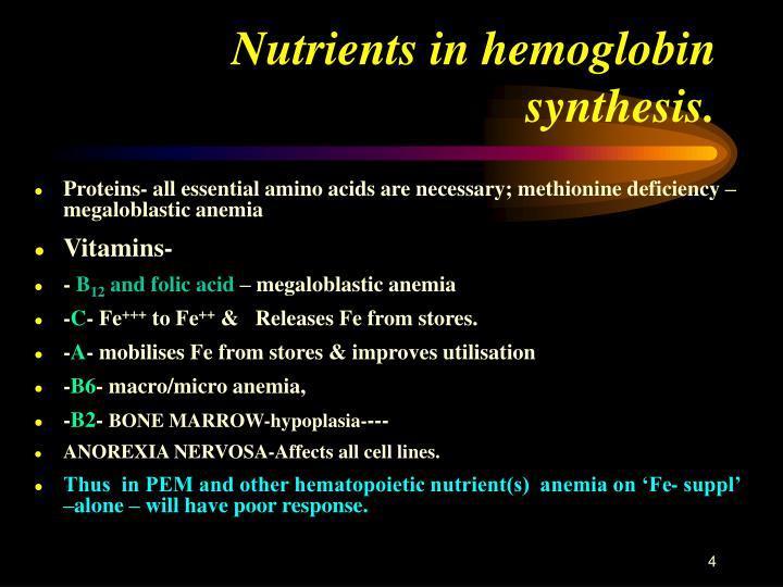 Nutrients in hemoglobin synthesis.