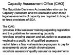 capacity assessment office cao
