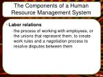 the components of a human resource management system1