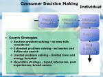 consumer decision making individual87