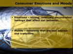 consumer emotions and moods
