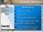 consumer motivation28