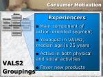 consumer motivation29