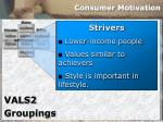 consumer motivation31